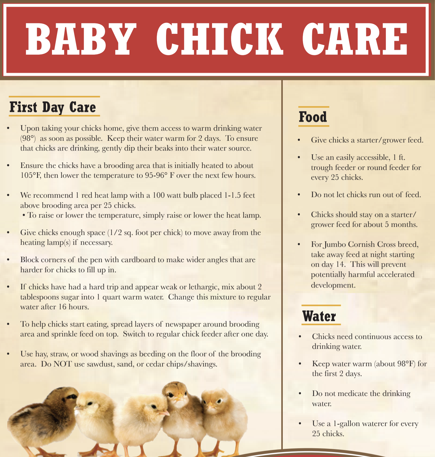 Chicks Care Info at Carr Hardware